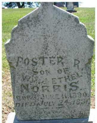 NORRIS, FOSTER R. - Dixon County, Nebraska | FOSTER R. NORRIS - Nebraska Gravestone Photos