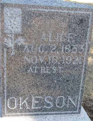OKESON, ALICE - Dixon County, Nebraska | ALICE OKESON - Nebraska Gravestone Photos