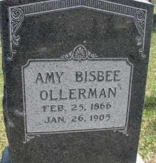 OLLERMAN, AMY - Dixon County, Nebraska | AMY OLLERMAN - Nebraska Gravestone Photos