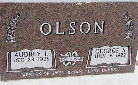 OLSON, GEORGE S, - Dixon County, Nebraska | GEORGE S, OLSON - Nebraska Gravestone Photos