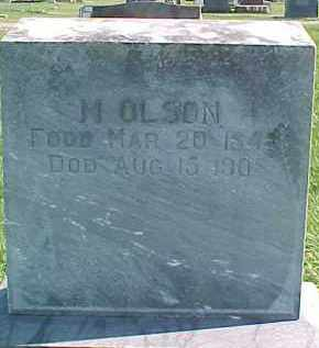 OLSON, M. - Dixon County, Nebraska | M. OLSON - Nebraska Gravestone Photos