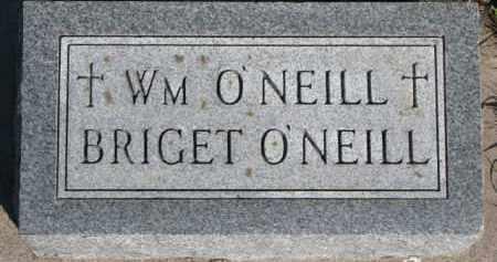 O'NEILL, WILLIAM - Dixon County, Nebraska | WILLIAM O'NEILL - Nebraska Gravestone Photos