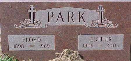 PARK, ESTHER - Dixon County, Nebraska | ESTHER PARK - Nebraska Gravestone Photos