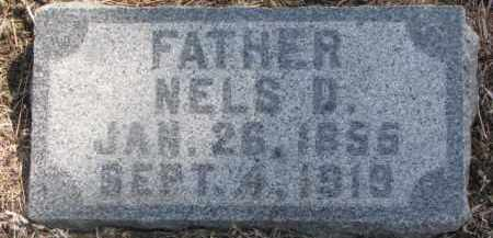 PEARSON, NELS D. - Dixon County, Nebraska   NELS D. PEARSON - Nebraska Gravestone Photos