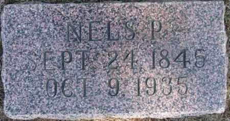 PETERSON, NELS P. - Dixon County, Nebraska | NELS P. PETERSON - Nebraska Gravestone Photos