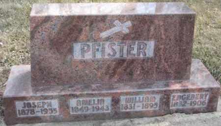 PFISTER, WILLIAM - Dixon County, Nebraska   WILLIAM PFISTER - Nebraska Gravestone Photos