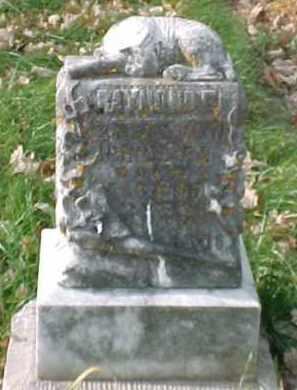 PHILLIPS, RAYMOND E. - Dixon County, Nebraska | RAYMOND E. PHILLIPS - Nebraska Gravestone Photos