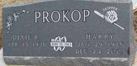 PROKOP, HARRY - Dixon County, Nebraska | HARRY PROKOP - Nebraska Gravestone Photos