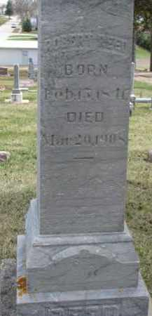 REED, ROBERT - Dixon County, Nebraska | ROBERT REED - Nebraska Gravestone Photos