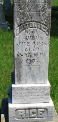 RICE, DEXTER - Dixon County, Nebraska | DEXTER RICE - Nebraska Gravestone Photos