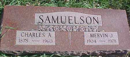 SAMUELSON, MERVIN J. - Dixon County, Nebraska   MERVIN J. SAMUELSON - Nebraska Gravestone Photos