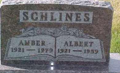 SCHLINES, AMBER - Dixon County, Nebraska | AMBER SCHLINES - Nebraska Gravestone Photos