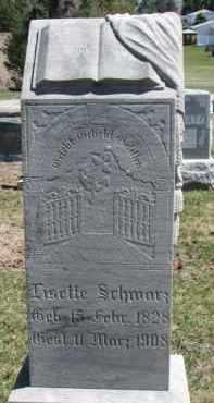 SCHWARZ, LISETTE - Dixon County, Nebraska | LISETTE SCHWARZ - Nebraska Gravestone Photos