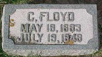 SHELLINGTON, C. FLOYD - Dixon County, Nebraska | C. FLOYD SHELLINGTON - Nebraska Gravestone Photos