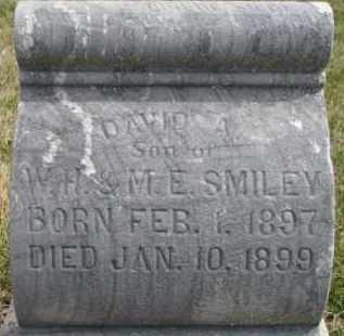 SMILEY, DAVID A. - Dixon County, Nebraska | DAVID A. SMILEY - Nebraska Gravestone Photos