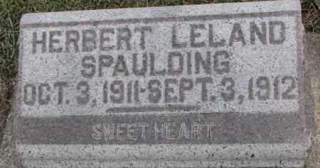 SPAULDING, HERBERT LELAND - Dixon County, Nebraska   HERBERT LELAND SPAULDING - Nebraska Gravestone Photos