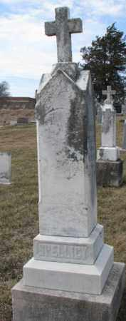 SPELLICY, ANDREW - Dixon County, Nebraska | ANDREW SPELLICY - Nebraska Gravestone Photos