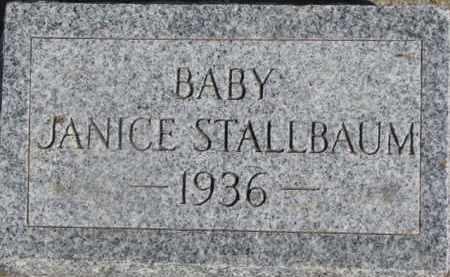 STALLBAUM, JANICE - Dixon County, Nebraska | JANICE STALLBAUM - Nebraska Gravestone Photos