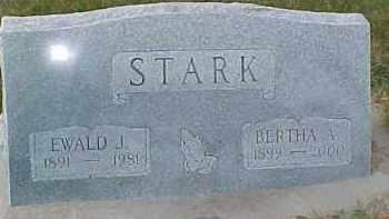 STARK, BERTHA A. - Dixon County, Nebraska | BERTHA A. STARK - Nebraska Gravestone Photos