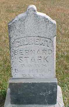 STARK, GILBERT BERNARD - Dixon County, Nebraska | GILBERT BERNARD STARK - Nebraska Gravestone Photos