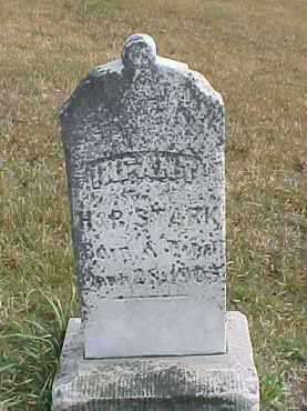 STARK, INFANT - Dixon County, Nebraska | INFANT STARK - Nebraska Gravestone Photos