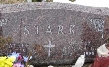 STARK, JULIUS J. - Dixon County, Nebraska | JULIUS J. STARK - Nebraska Gravestone Photos