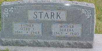 STARK, BERTHA - Dixon County, Nebraska | BERTHA STARK - Nebraska Gravestone Photos