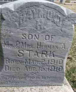STARK, RAYMOND H. - Dixon County, Nebraska | RAYMOND H. STARK - Nebraska Gravestone Photos