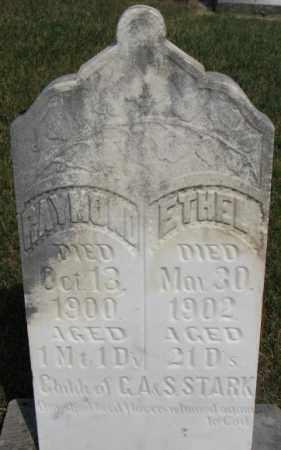 STARK, ETHEL - Dixon County, Nebraska | ETHEL STARK - Nebraska Gravestone Photos