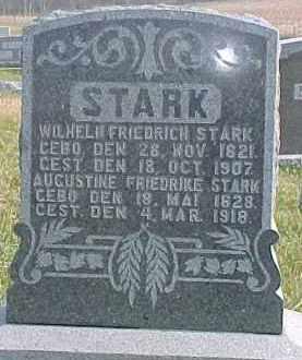 STARK, WILHELM FRIEDRICH - Dixon County, Nebraska | WILHELM FRIEDRICH STARK - Nebraska Gravestone Photos