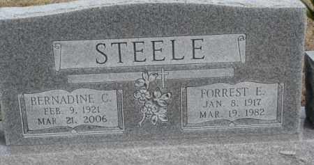 STEELE, FORREST E. - Dixon County, Nebraska | FORREST E. STEELE - Nebraska Gravestone Photos