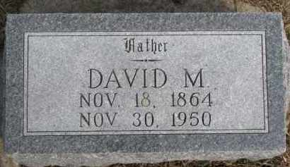 STEELE, DAVID M. - Dixon County, Nebraska | DAVID M. STEELE - Nebraska Gravestone Photos