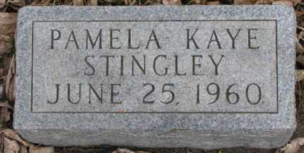 STINGLEY, PAMELA KAYE - Dixon County, Nebraska | PAMELA KAYE STINGLEY - Nebraska Gravestone Photos