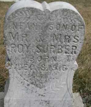 SURBER, INFANT - Dixon County, Nebraska | INFANT SURBER - Nebraska Gravestone Photos