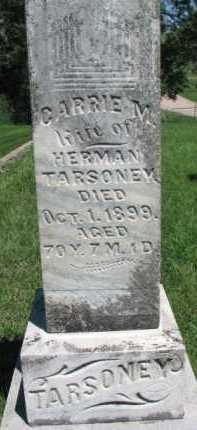 TARSONEY, CARRIE M. - Dixon County, Nebraska   CARRIE M. TARSONEY - Nebraska Gravestone Photos