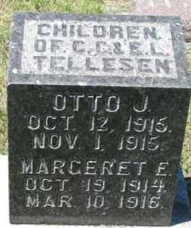 TELLESEN, OTTO J. - Dixon County, Nebraska   OTTO J. TELLESEN - Nebraska Gravestone Photos