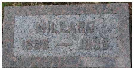 TOWNSEND, MILLARD - Dixon County, Nebraska | MILLARD TOWNSEND - Nebraska Gravestone Photos