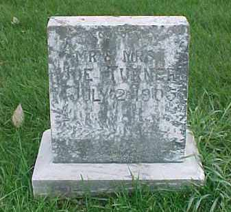 TURNER, INFANT (S) - Dixon County, Nebraska | INFANT (S) TURNER - Nebraska Gravestone Photos
