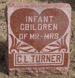 TURNER, INFANTS - Dixon County, Nebraska | INFANTS TURNER - Nebraska Gravestone Photos