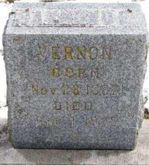 VERNON, RAYMOND E. - Dixon County, Nebraska   RAYMOND E. VERNON - Nebraska Gravestone Photos