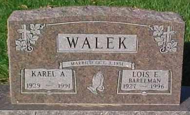 WALEK, LOIS E. - Dixon County, Nebraska   LOIS E. WALEK - Nebraska Gravestone Photos