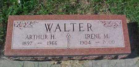 WALTER, IRENE M. - Dixon County, Nebraska | IRENE M. WALTER - Nebraska Gravestone Photos