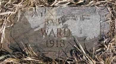 WARD, BABY - Dixon County, Nebraska | BABY WARD - Nebraska Gravestone Photos