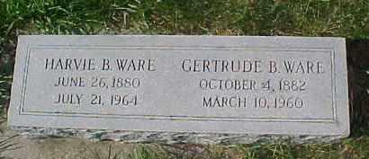 WARE, HARVIE B. - Dixon County, Nebraska | HARVIE B. WARE - Nebraska Gravestone Photos