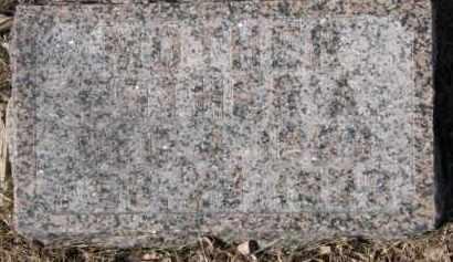 GREEN WARNER, ESTHER A. - Dixon County, Nebraska | ESTHER A. GREEN WARNER - Nebraska Gravestone Photos