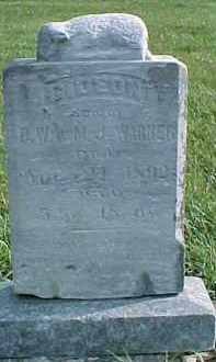 WARNER, GIDEON - Dixon County, Nebraska | GIDEON WARNER - Nebraska Gravestone Photos
