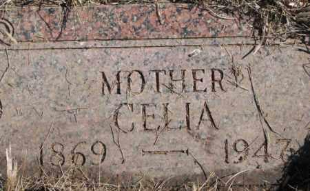 HENNINGSON WHEELER, CELIA - Dixon County, Nebraska | CELIA HENNINGSON WHEELER - Nebraska Gravestone Photos