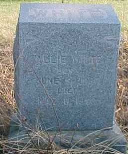 WHITE, ALLIE - Dixon County, Nebraska | ALLIE WHITE - Nebraska Gravestone Photos