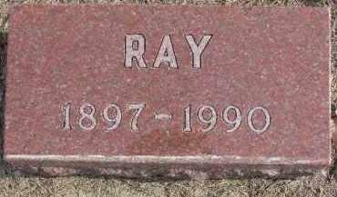WHITE, RAY - Dixon County, Nebraska | RAY WHITE - Nebraska Gravestone Photos