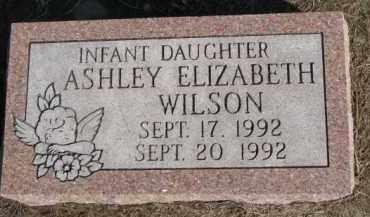 WILSON, ASHLEY ELIZABETH - Dixon County, Nebraska   ASHLEY ELIZABETH WILSON - Nebraska Gravestone Photos